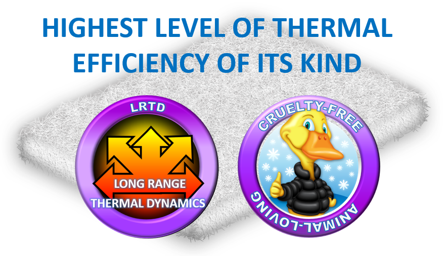 highest level of thermal efficiency of its kind